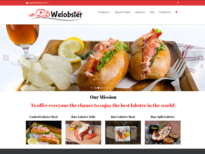 solutionsgalore.com welobster